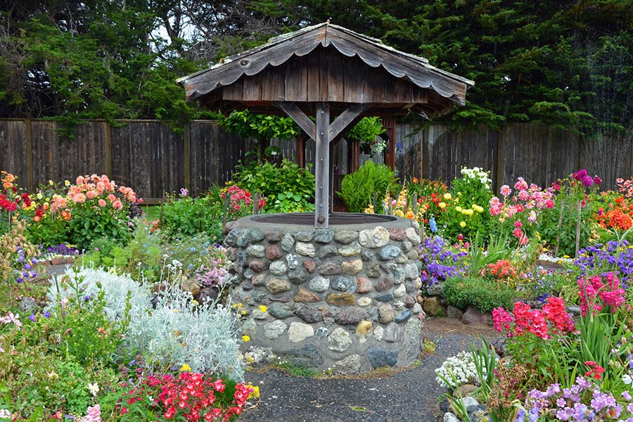 Water well surrounded by a garden with flowers